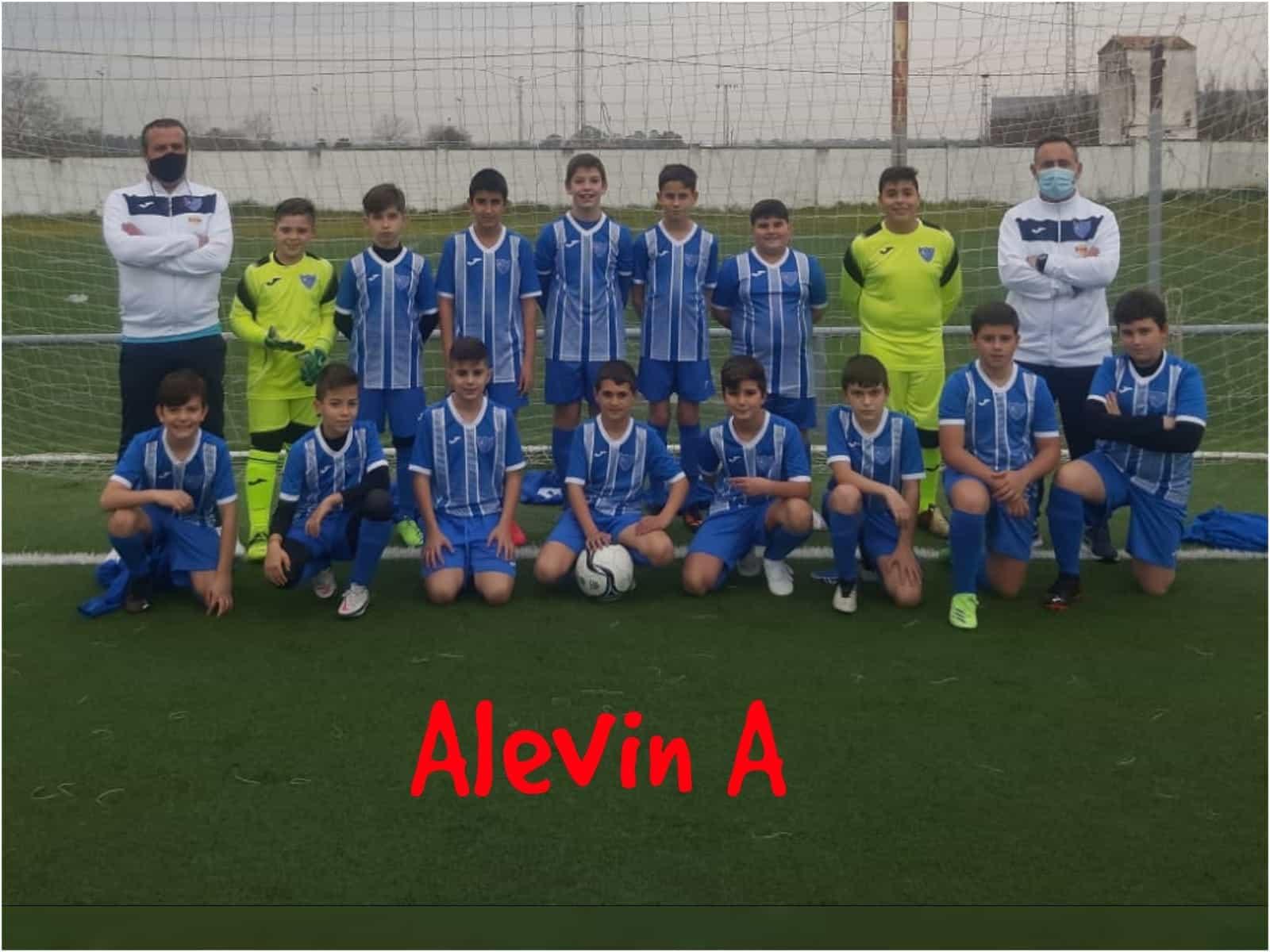 210305 alevin a